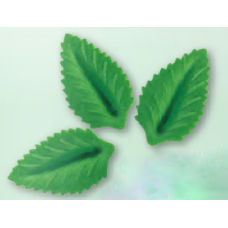 Wafer Leaves - Medium - Green