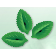 Wafer Leaves - Large - Green