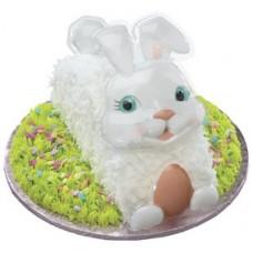 White Bunny PopTops