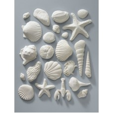 White Gum Paste Sea Shell Assortment