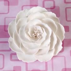 Briar Roses - Large - White
