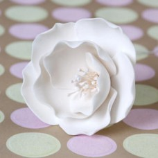 Briar Roses - Small - White