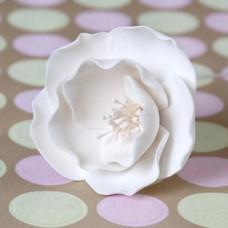 Briar Roses - Small - White