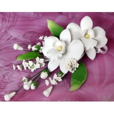 Double African Orchid Sprays - White