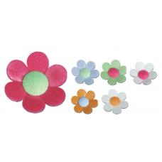 Anemones - Small - Asst.