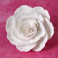 Briar Roses - Medium - White