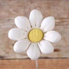 Daisies - Small - White