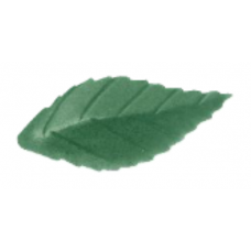 Wafer Rose Leaves - Small - Dark Green
