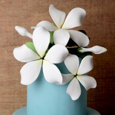 Hawaiian Bloomed Plumeria - Large - White
