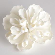 Heirloom Peony - Large - White