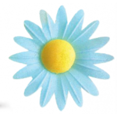 Daisies - Small - Blue