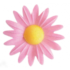 Daisies - Small - Pink