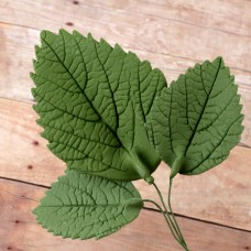 Hydrangea Leaves - Asst. - Green