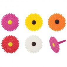 Gerbera Daisy Picks