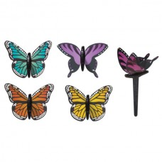Butterfly Pics
