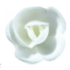 Wafer Roses - Medium - White