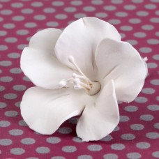 Fruit Blossoms - Medium - White