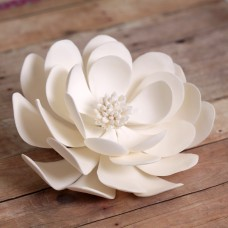 Dahlias - Large - White