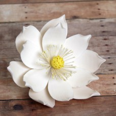 Lotus Flower - Large - White