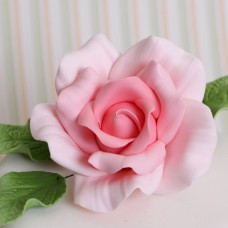 Roses - X-Large - Pink